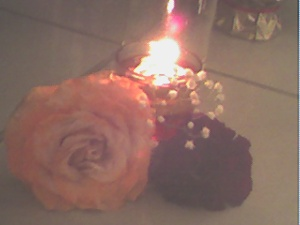 a couple of roses enlighted by a candle lit